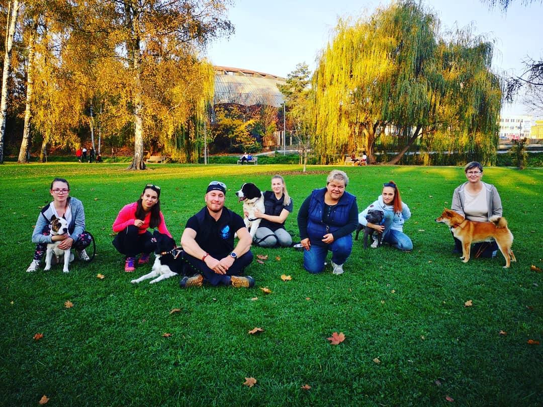 Skupinový tréning psov v Žiline