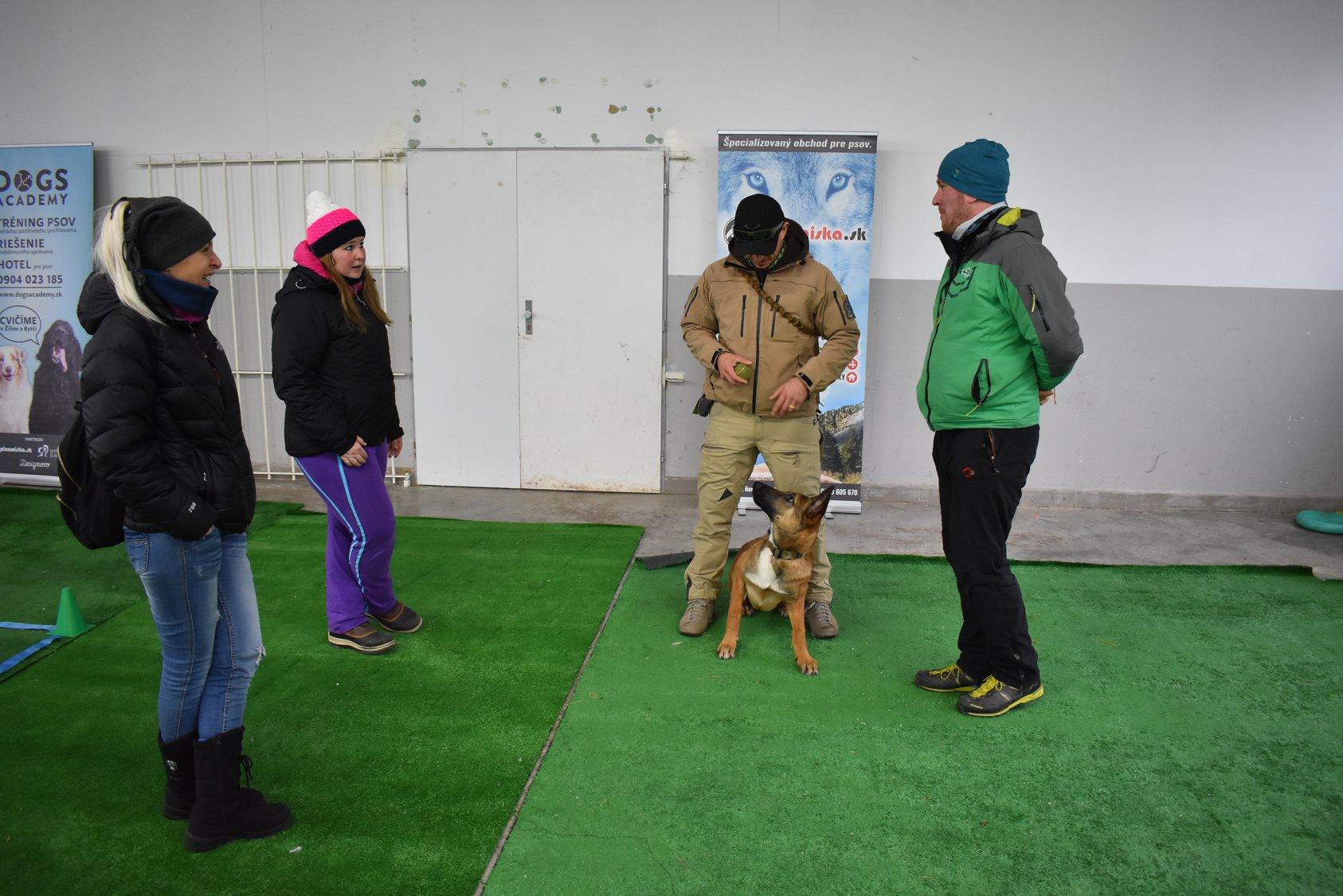 Tréning psa v hale Žilina